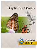 Insect Orders Mobile Application