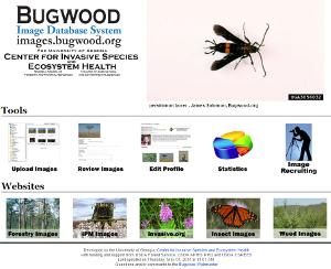 Bugwood Images