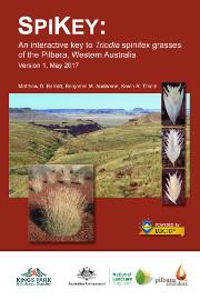 An interactive key to Triodia spinifex grasses of the Pilbara, Western Australia