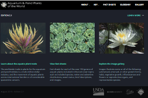 Aquarium and Pond Plants of the World (APPW)
