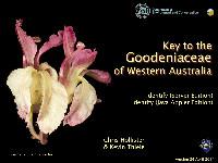 Key to the Goodeniaceae of Western Australia