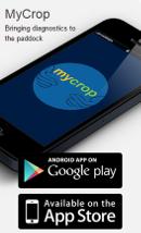 MyCrop diagnostic apps - updated