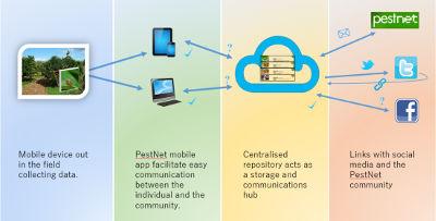 Pestnet app workflow