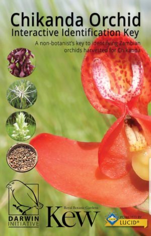 Chikanda Orchid identification key home screen