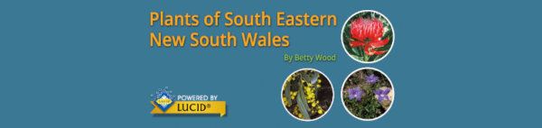 Plants of South Eastern New South Wales