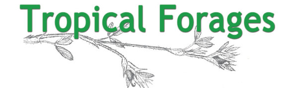 Tropical Forages: an interactive selection tool